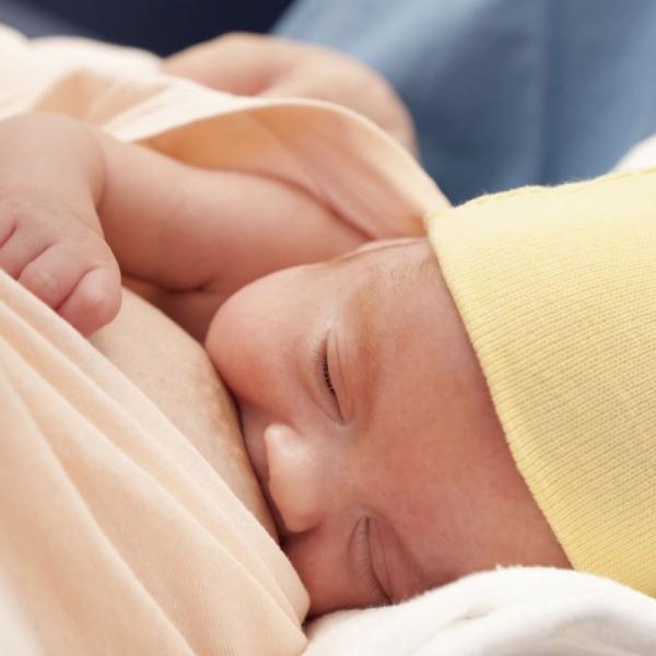 Грудное вскармливание в родильном доме. Бесплатная лекция