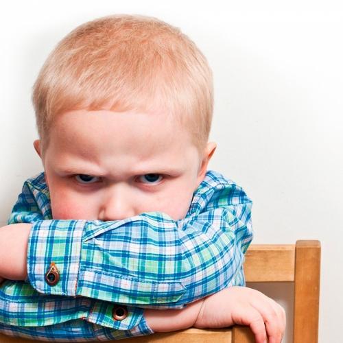 Вебинар «Истерики, агрессия и непослушание ребёнка. Как справляться?»