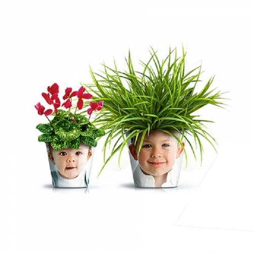 Вебинар «Дети. Воспитывать или выращивать?»
