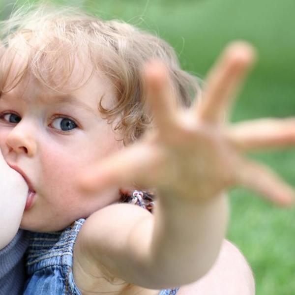 Кормление ребёнка старше 1-2 лет. Этапы завершения